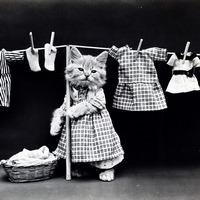 Одеваем и обуваем ребенка - детский гардероб