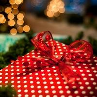 Подарки на новый год и рождество. Что под елочку принес Дед Мороз?