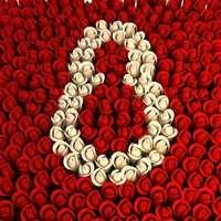 Что подарить на 8 марта любимым женщинам?