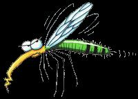 Экологические советы от комаров
